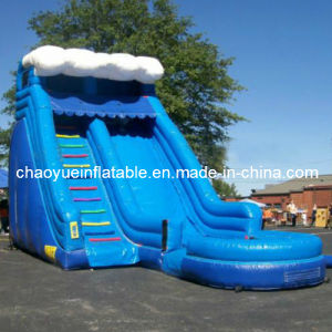 Classic Wave Inflatable Water Slide with Pool (CYSL-556) pictures & photos
