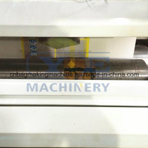 Plastic Film Two Color Flexographic Printing Machine (YT) pictures & photos