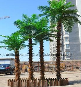 Outdoor Garden Decoration Artificial Coconut Palm Trees