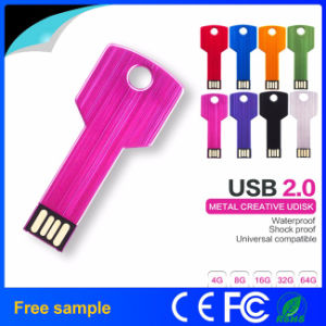 China Manufacter Wholesale Multicolor Steel Key USB Flash Drive