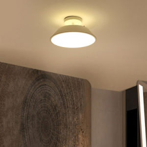 China Led Ceiling Lamp For Bedsroom