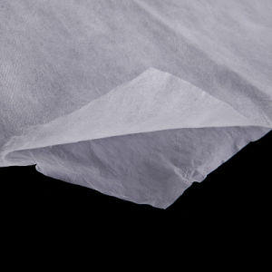 Laminated Polypropylene Polyethylene PE Film Fabric pictures & photos