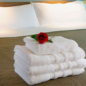 100% Cotton Hotel Towel Sets pictures & photos