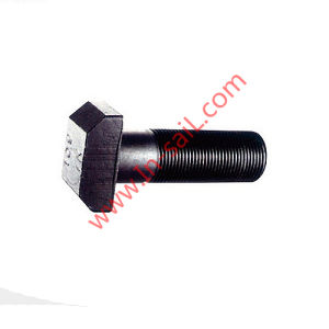 DIN261 High-Strength Steel T-Head Bolts for Industry Machinery pictures & photos