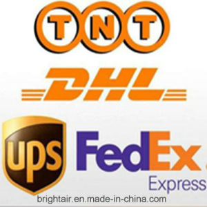 Brand Electronic Products Courier Express From China to