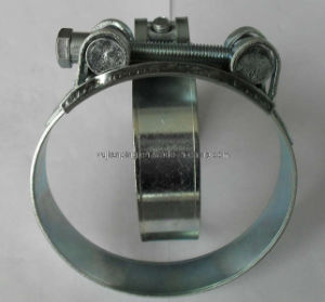 High Quality Robust Hose Clamp pictures & photos