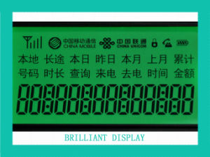 Custom Design: Tn Transflective Positive Segement LCD Module with RoHS (VTM88599A)