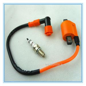 HP Ignition Coil Allumage/Eix-D8 Irridium Bougie Spark Plug for 4-Stroke  Motorcycle/Dirt Bike/ATV-Quads 125cc/150cc/200cc/250cc