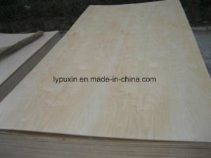 High Quality Furniture Birch Plywood for Decorative Use with Low Price