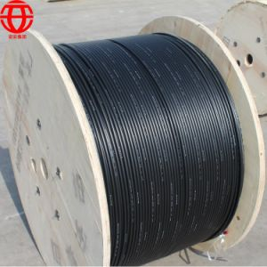 Outdoor Direct Buried Double Jacket Armored Cable Gyfta53 24b1.3 pictures & photos