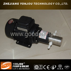 Cqcb Stainless Steel Magnetic Gear Oil Pump with Advantage of Easy Operation pictures & photos