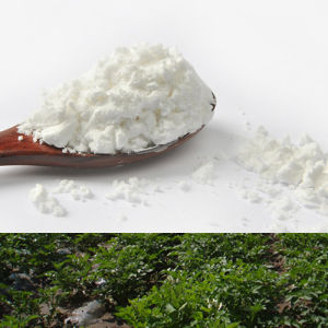 Food Grade Potato Starch