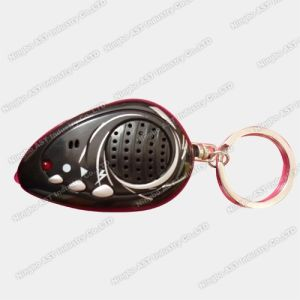Voice Key Ring, Sound Keychain, Keychain, Voice Keychain pictures & photos