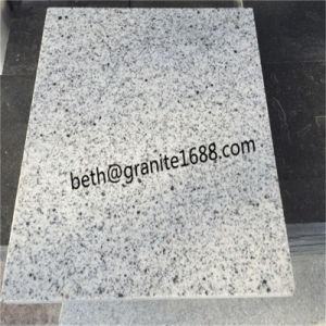 China Kashmir White Granite Cheap Granite Slab Grey White Granite