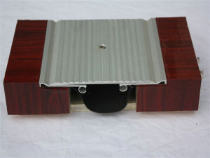 Heavy Duty Floor Expansion Joint Types pictures & photos