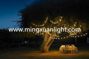 2016 Christmas Fairy Light for Outdoor Decoration pictures & photos