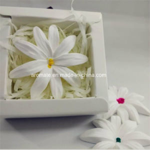 Design Customized Ceramic Home Fragrance (AM-02)