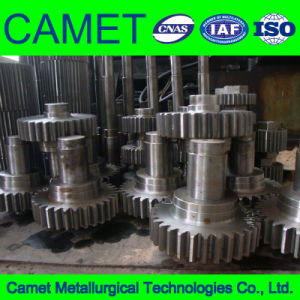 High Quality Helical Gear Shaft pictures & photos