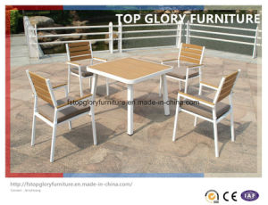 Alum Plastic Wood Garden Outdoor Dining Set (TG-1335)
