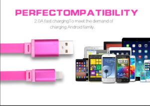 USB Data Cable for Charging or Data Transmission with Flat Noodle TPE Material pictures & photos
