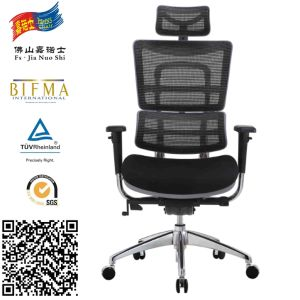 Ergonomic Back Support Office Chair