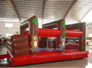 Popular Style Inflatable Bouncer for Sale (A162)
