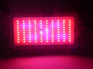 Special Crops LED Grow Light with High Efficiency Power pictures & photos