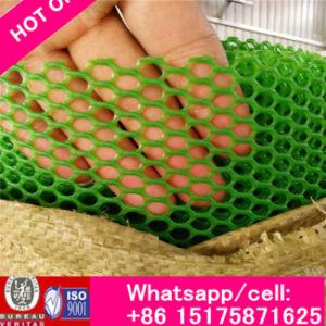 Plastic Chicken Mesh / Plastic Plain Woven Mesh Factory PP Nets