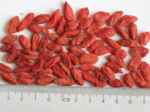 Ningxia Dried Goji Berries