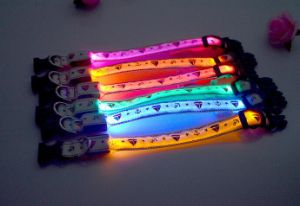 LED Flashing Dog Collar for Christmas and LED Dog Collar pictures & photos