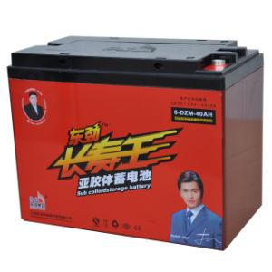 China 12v40ah Man Logo E Bike Storage Battery E Rickshaw Lead