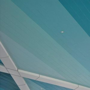 High Quality Metal Linear C-Shaped Strip Ceiling with Colorful Design pictures & photos