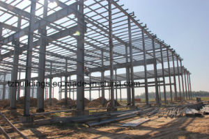 Turn-Key Steel Structure Plant Projects pictures & photos
