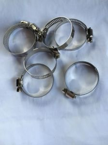 Dn20 Dn25 Stainless Steel Hose Hoop Hose Clamp pictures & photos