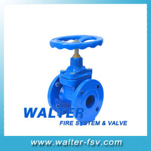 Cast Iron Resilient Seat Gate Valve pictures & photos