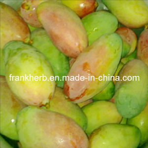 10:1 Wild African Mango Extract pictures & photos