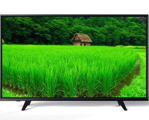 Chinese Manufacturer 43 Inch High Quality LED TV (43L73F)