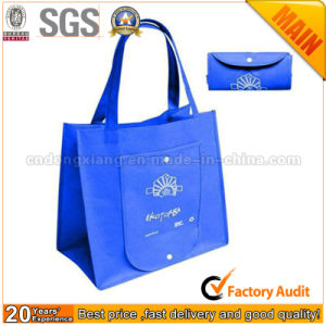 Eco-Friendly Handbags, PP Spunbond Non Woven Bag pictures & photos