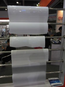 White Opaque PET Film/ Polyester Film for UV Printing or Eco Solvent Printig pictures & photos