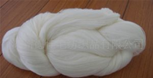 Wool/Tencel Blended Yarns (DJ08)