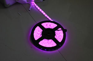 China Wholesale LED Lighting SMD3528 Flexible LED Strip Light pictures & photos