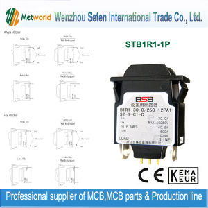 Complete Certificate Hydraulic Magnetic MCB (B1R1-1P) pictures & photos