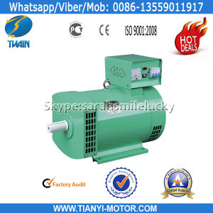 Fast Delivery Low Rpm Generator (STC Series)