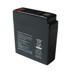 Portable Sealed Lead Battery (FP405)