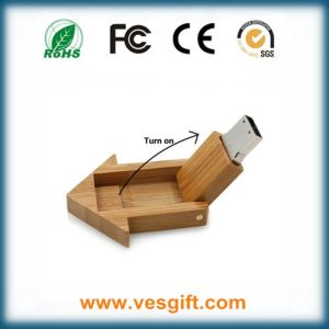 USB Housing Shape Lovely Design USB Gift Memory Stick pictures & photos
