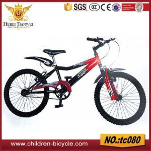 China 20 Road Bike Racing Bicycle Mountain Bikes China Child