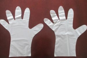 Disposable Folded PE Gloves with Instruction (7-5092) pictures & photos