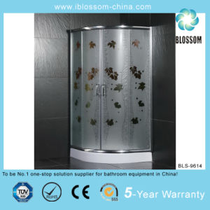 New Indoor Stainless Steel Shower Room (BLS-9614) pictures & photos