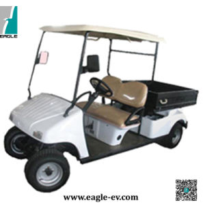 Electric Golf Cart, CE Approved, 2 Seats, Eg2046hcx pictures & photos