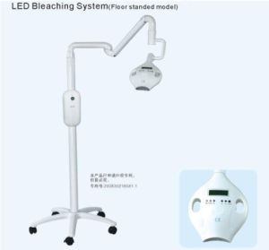 Comfortable Teeth Bleaching Lamp with 8 LED Lamp